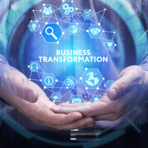 Digital Leadeship for Executive and Business Entrepreneurs online course